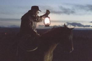 American cowboy cattle watch