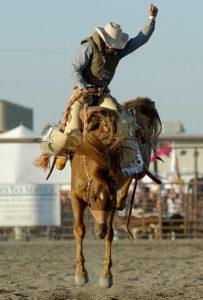 modern cowboy